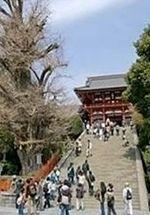 八幡宮.jpg