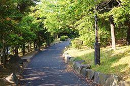 海の公園散歩道-1.jpg